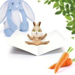 Rabbit Pop Up Card